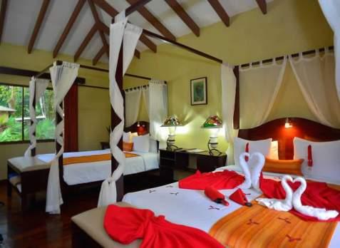 Mejores hoteles en tortuguero, Costa Rica