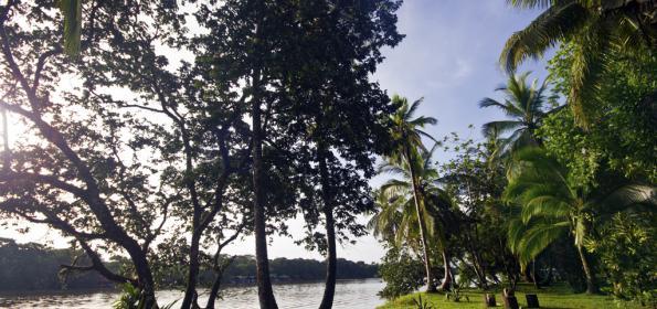 EL PARAÍSO ESTÁ EN EL CARIBE DE COSTA RICA