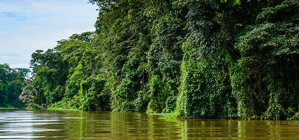 ADVENTURE VACATION IN COSTA RICA: THE UNIQUE EXPERIENCE OF KNOWING TORTUGUERO