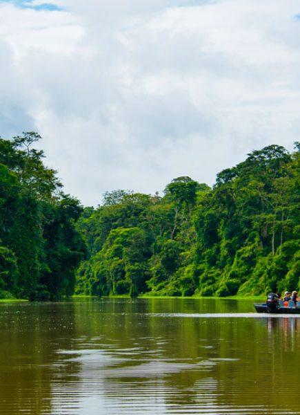 Manatus Tortuguero: Where sustainable tourism thrives