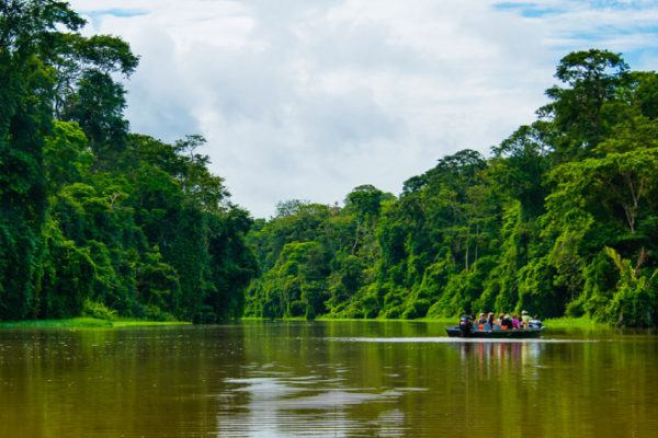 Manatus Tortuguero: Where sustainable tourism thrives