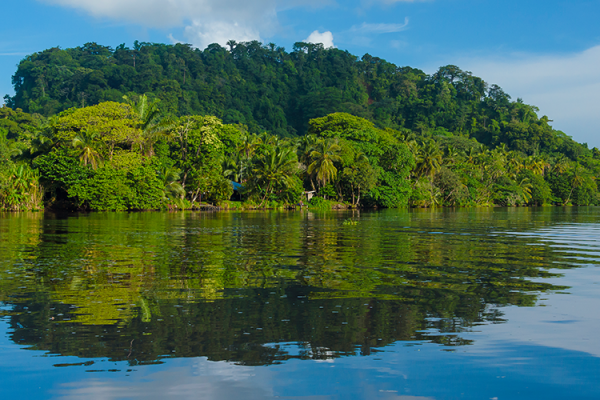 Want an exotic destination for your next trip?  Choose Tortuguero!