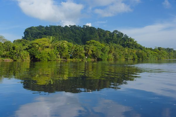(English) 5 Reasons why Manatus Tortuguero is the perfect post-pandemic getaway