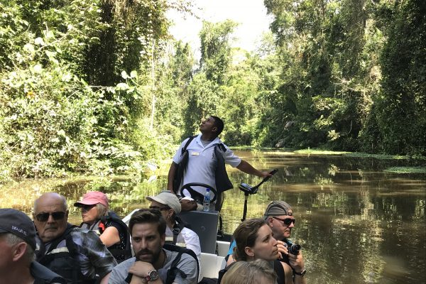 Discover 5 photo opportunities when visiting Tortuguero!