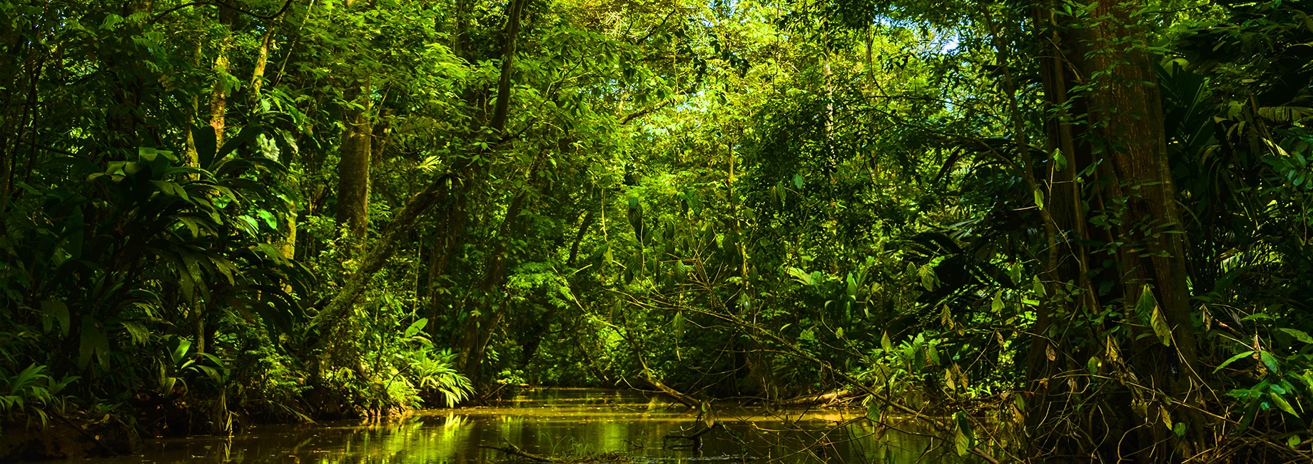 Tortuguero-and-Costa Rica-getting-ready-for-your-visit