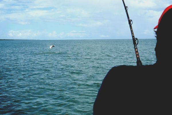 Tortuguero is a top Costa Rican destination for sport fishing too!